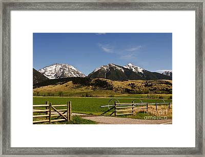 Framed Print featuring the photograph Springtime In Montana by Sue Smith