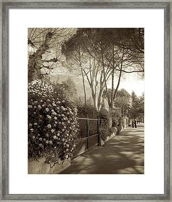 Springtime In Montreux Framed Print by Colleen Williams