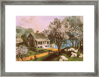 Springtime In New England Framed Print by JAMART Photography