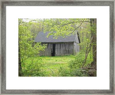 Springtime In New England Framed Print by Marjorie Tietjen