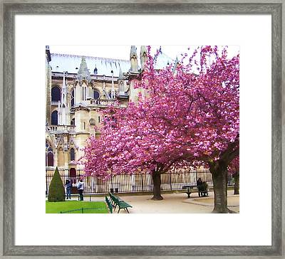 Springtime In Paris Framed Print