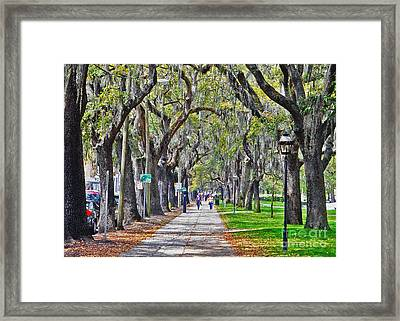 Springtime In Savannah Framed Print by Lydia Holly