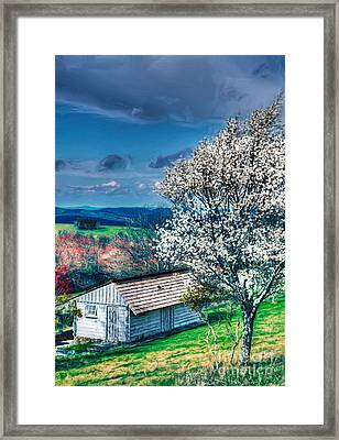 Springtime In The Blue Ridge Mountains II Framed Print