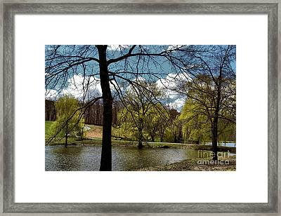 Springtime In The Country Framed Print by Gemblue Photography