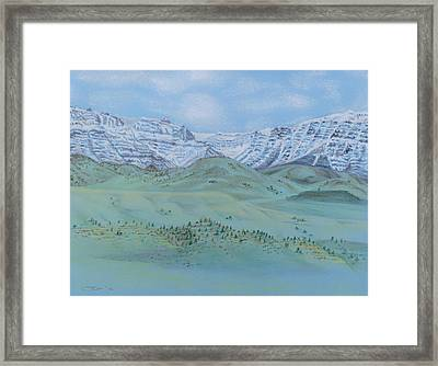 Springtime In The Rockies Framed Print by Michele Myers