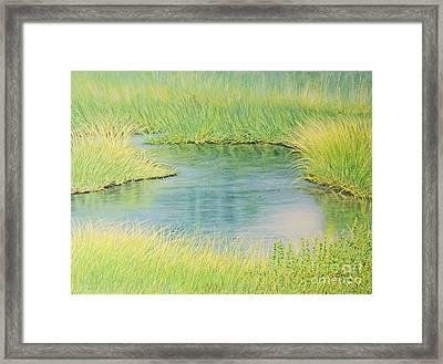 Springtime Marsh-new Beginnings Framed Print