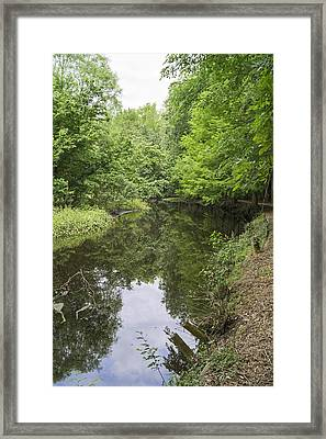 Springtime On Jeffries Creek Framed Print by MM Anderson