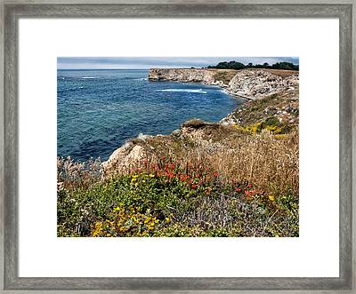 Springtime On The California Coast Framed Print