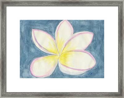 Springtime Perfection Framed Print by Dawn Marie Black