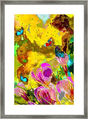 Springtime Splash Framed Print