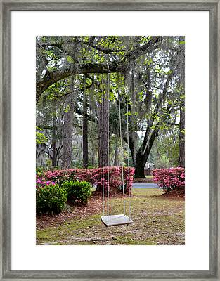 Springtime Swing Time Framed Print by Carla Parris