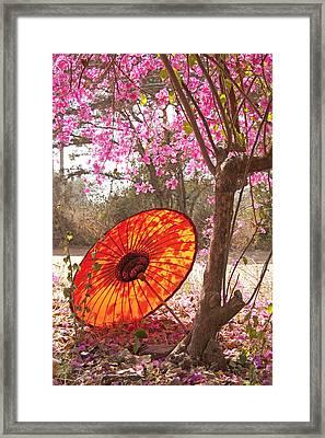 Springtime Umbrella Framed Print by Dennis Cox WorldViews