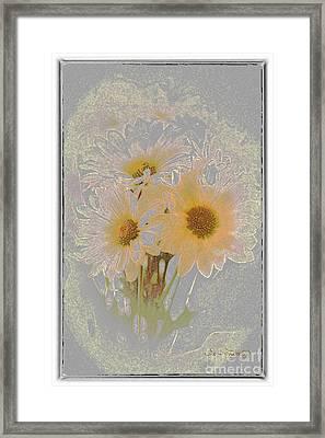 Sprinkled Daisies Framed Print by Susan  Lipschutz