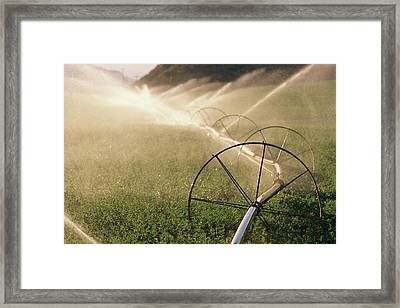 Sprinkler System With Wheels Watering Framed Print by Panoramic Images