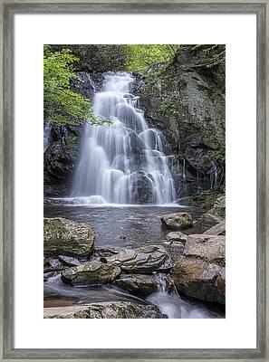 Spruce Flat Falls Gsmnp  Framed Print