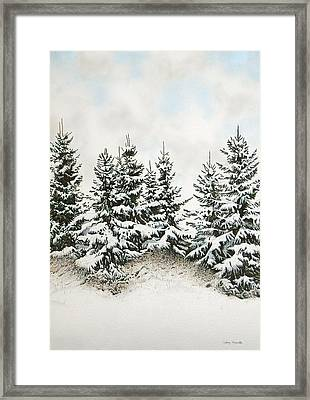 Spruce-trees In Winter Framed Print by Conrad Mieschke