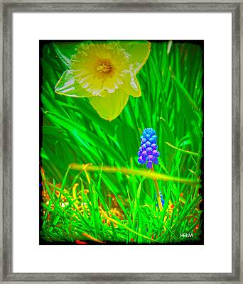 Sprung Framed Print by Mayhem Mediums