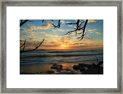 Spying At The Sun Framed Print