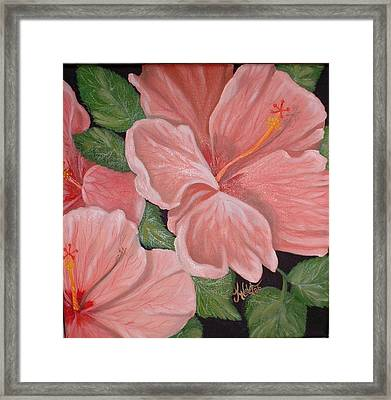 Square Foot Hibiscus Framed Print by Kathern Welsh