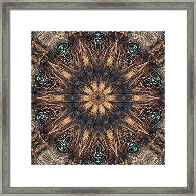 Square Roots Framed Print by Wendy J St Christopher