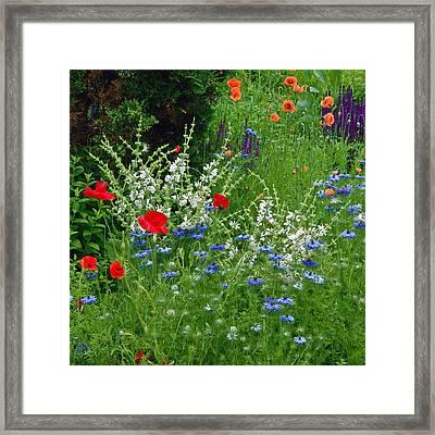 Squarely Spring Floral Garden Framed Print