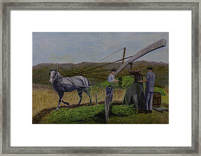 Squeezing Sorghum For Sugar Framed Print by Clifford Cox