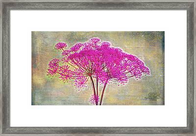 Squiggle Fun Pinked Framed Print by Barbara R MacPhail