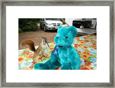 Squirrel And Bear Framed Print by Paula Brown