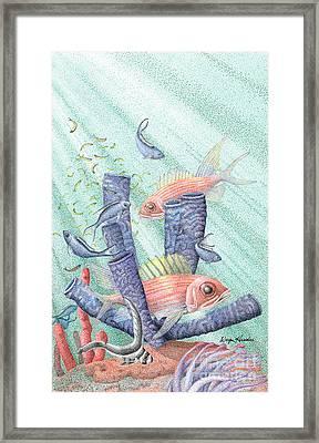 Squirrel Fish Reef Framed Print by Wayne Hardee