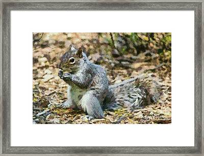 Squirrel In Central Park Framed Print by George Atsametakis