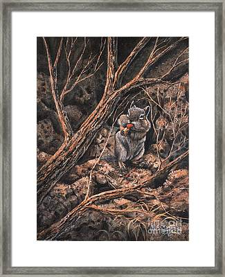 Squirrel-ly Framed Print