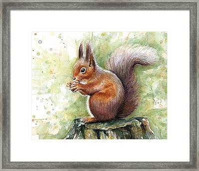 Squirrel Watercolor Art Framed Print by Olga Shvartsur
