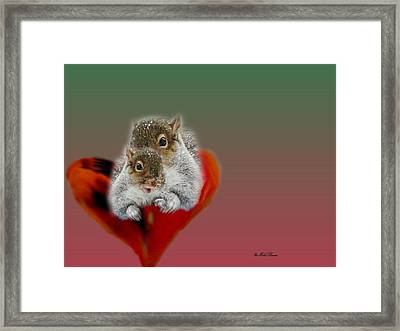 Squirrels Valentine Framed Print