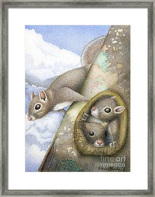 Squirrels Framed Print by Wayne Hardee