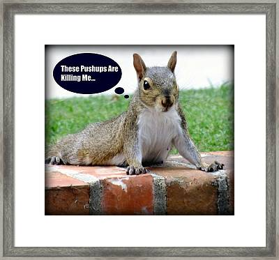 Squirrely Push Ups Framed Print by Karen Wiles