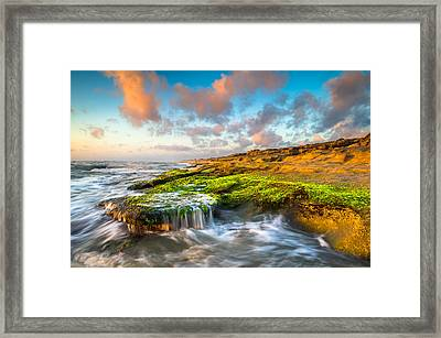 St. Augustine Fl Beach Sunrise - The Coquina Coast Framed Print by Dave Allen