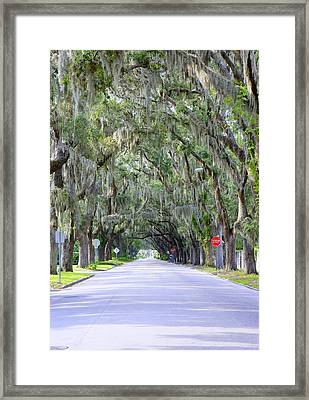 St. Augustine Road Framed Print by Laurie Perry