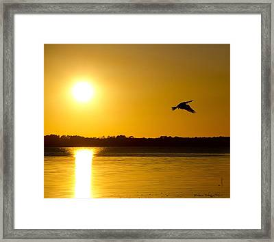 St. Johns Sunset Framed Print by Kathy Ponce