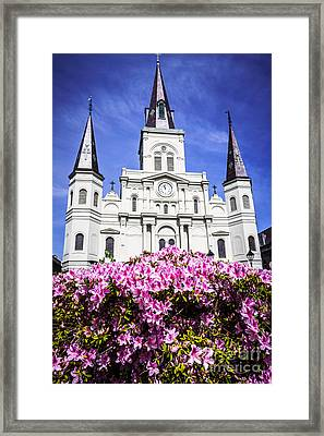 St. Louis Cathedral And Flowers In New Orleans Framed Print