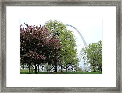St. Louis Spring Framed Print by Theresa Willingham