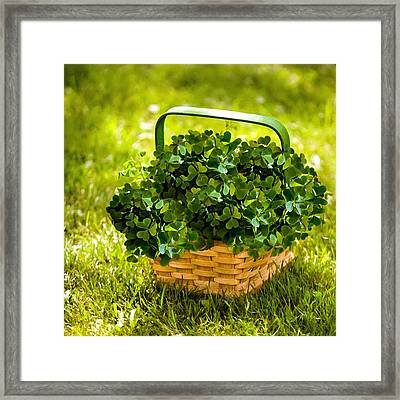 St Patricks Day Framed Print