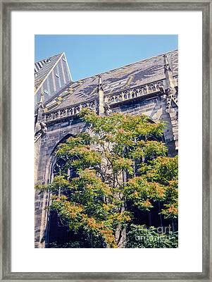 St. Stephen's Cathedral Framed Print