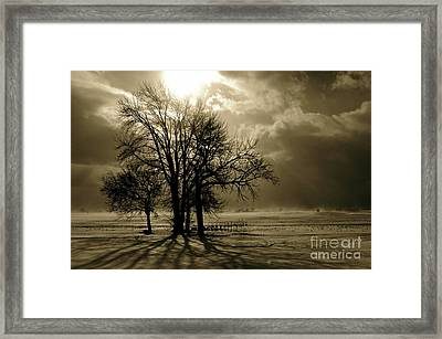 St. Valentine's Day Framed Print by Tim Good