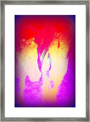 Forever Dreaming Of Stable Love Framed Print