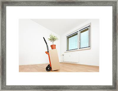Stack Of Cardboard Boxes On A Trolley Framed Print by Wladimir Bulgar
