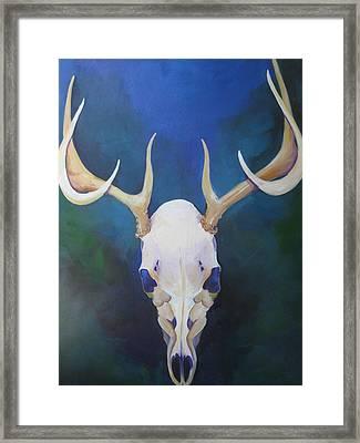 Stag Framed Print by Allison Kohn