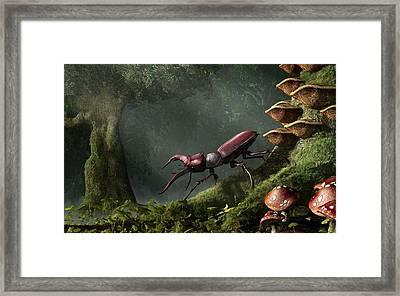 Stag Beetle Framed Print by Daniel Eskridge
