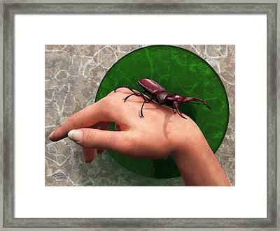 Stag Beetle On Hand Framed Print