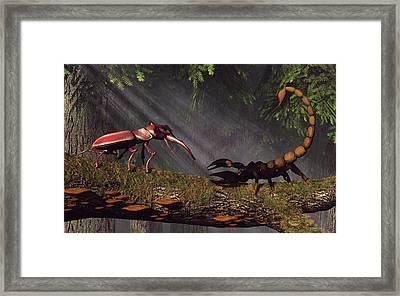 Stag Beetle Versus Scorpion Framed Print by Daniel Eskridge