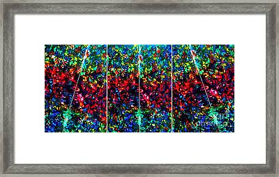 Stained Glass Collage Framed Print by Nancy Mueller